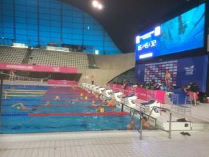 A Fantastic Pool