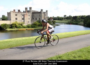 Nice shot of Leeds Castle!